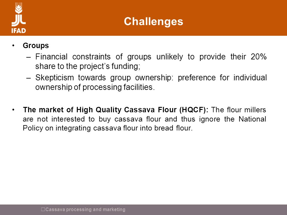 Cassava processing and marketing Challenges Groups –Financial constraints of groups unlikely to provide their 20% share to the project's funding; –Ske