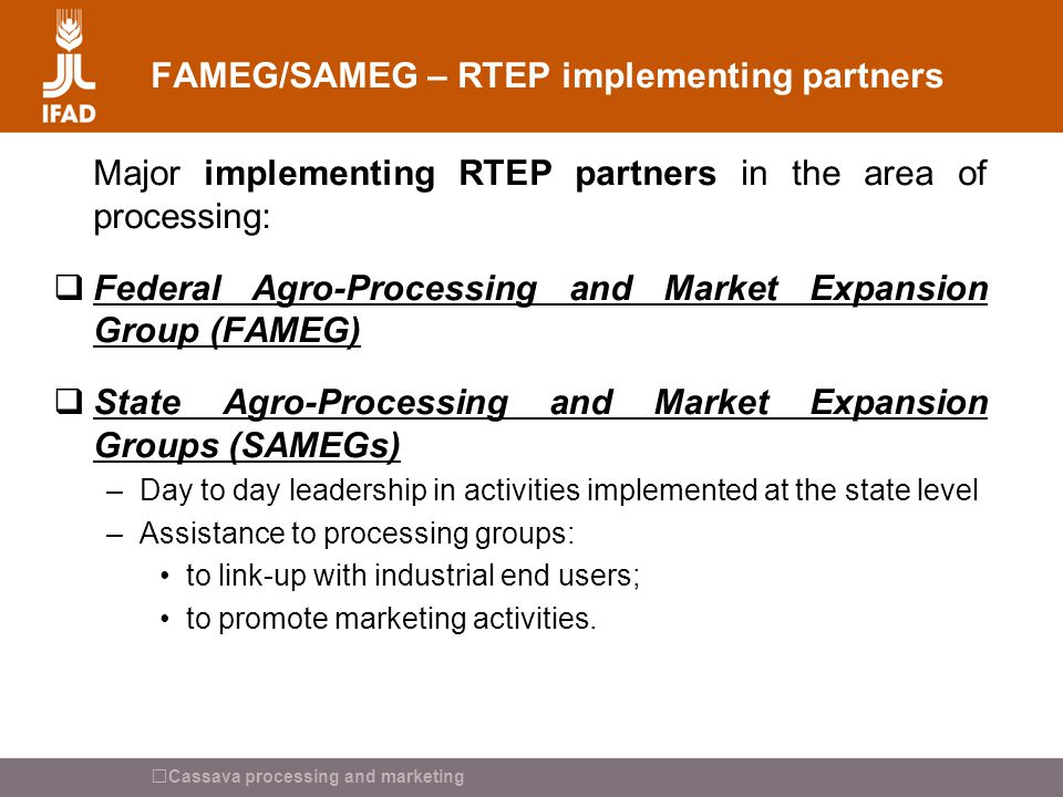 Cassava processing and marketing FAMEG/SAMEG – RTEP implementing partners Major implementing RTEP partners in the area of processing:  Federal Agro-P
