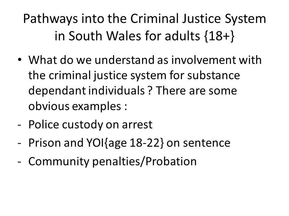 Pathways into the Criminal Justice System in South Wales for adults {18+} What do we understand as involvement with the criminal justice system for su