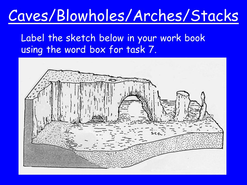 Caves/Blowholes/Arches/Stacks Label the sketch below in your work book using the word box for task 7.