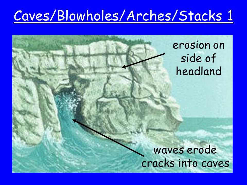 Caves/Blowholes/Arches/Stacks 1 erosion on side of headland waves erode cracks into caves
