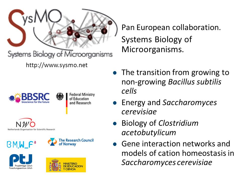 Pan European collaboration. Systems Biology of Microorganisms.