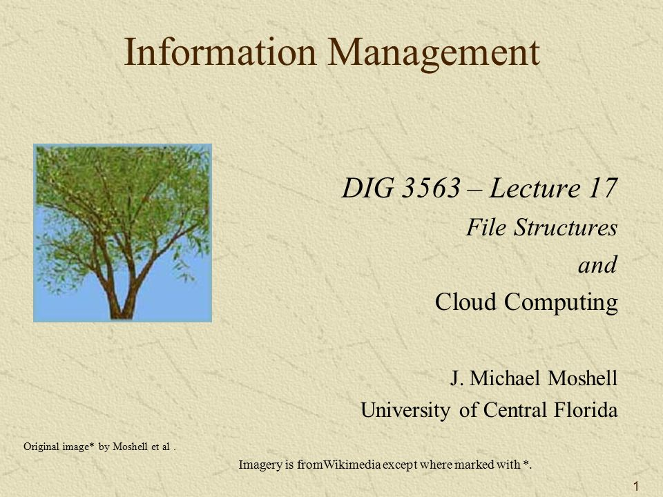 1 Information Management DIG 3563 – Lecture 17 File Structures and Cloud Computing J.