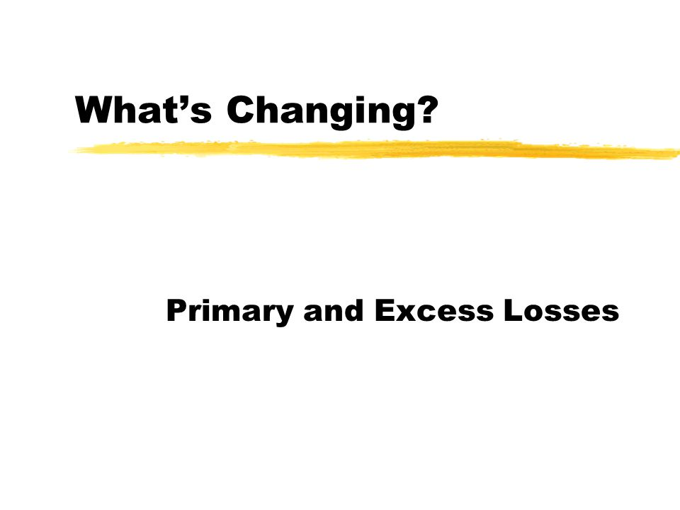 What's Changing? Primary and Excess Losses