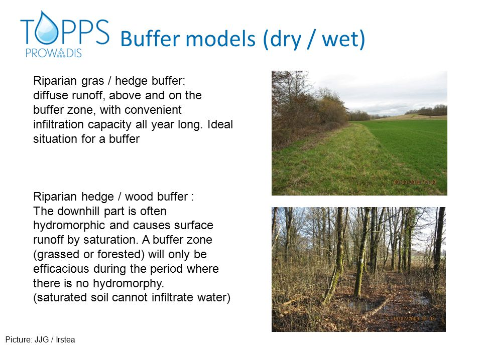 Buffer models (dry / wet) Wetlands (natural / artificial) contain an open water body (temporary or permanent, shallow): lagoons, vegetated ditches, pools,...