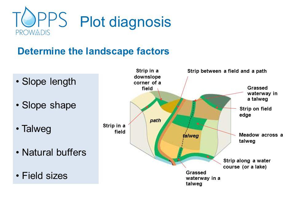 Determine the landscape factors Plot diagnosis Slope length Slope shape Talweg Natural buffers Field sizes talweg Strip along a water course (or a lak