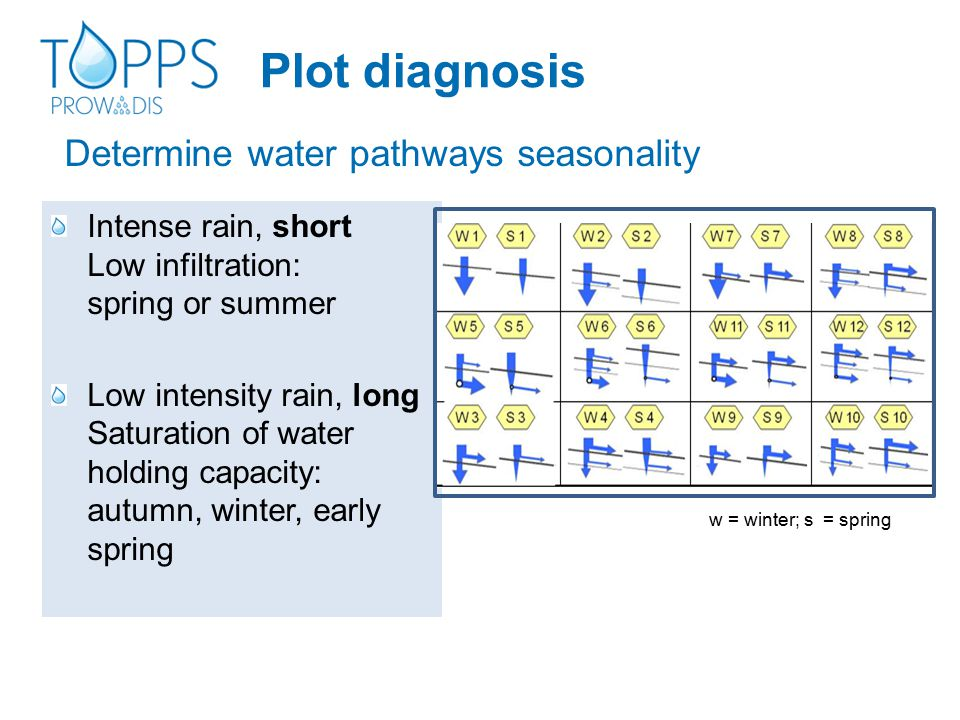 Determine water pathways seasonality Intense rain, short Low infiltration: spring or summer Low intensity rain, long Saturation of water holding capacity: autumn, winter, early spring w = winter; s = spring Plot diagnosis