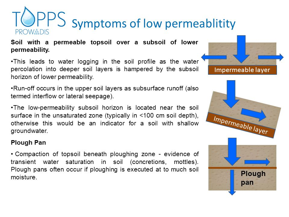 Symptoms of low permeablitity Soil with a permeable topsoil over a subsoil of lower permeability.