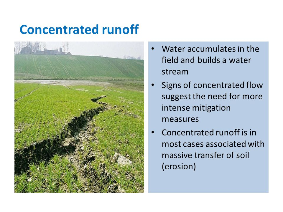 Water accumulates in the field and builds a water stream Signs of concentrated flow suggest the need for more intense mitigation measures Concentrated