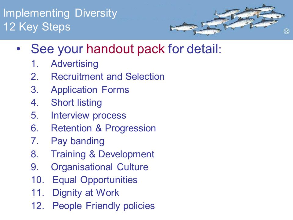 Implementing Diversity 12 Key Steps See your handout pack for detail : 1.