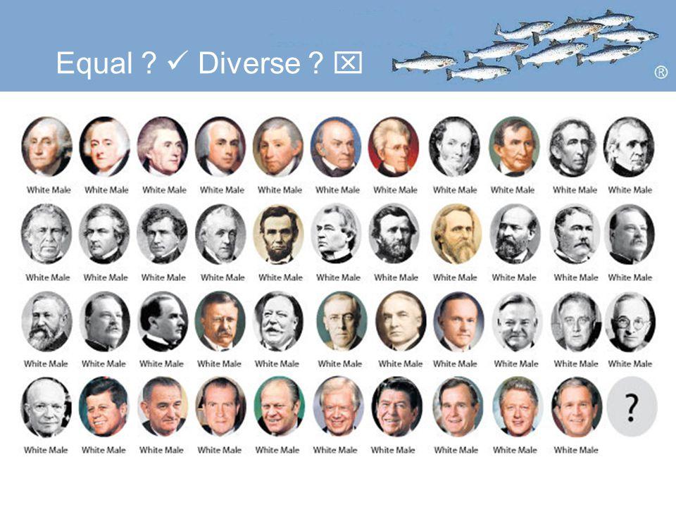 Equal Diverse 