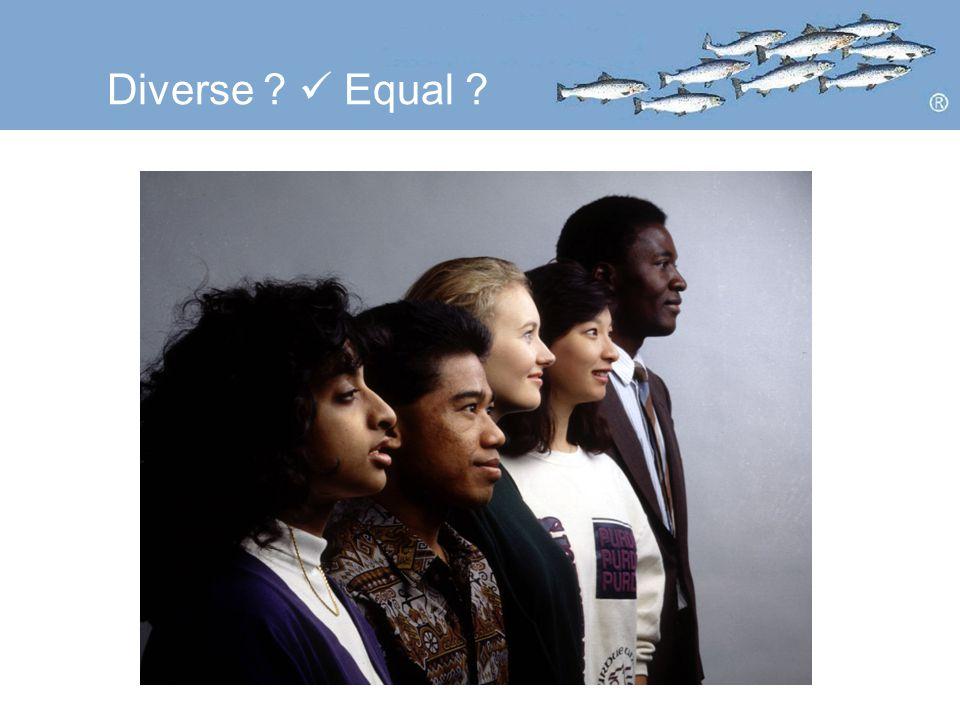 Diverse Equal