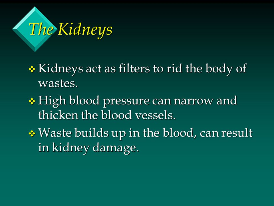 The Kidneys v Kidneys act as filters to rid the body of wastes.