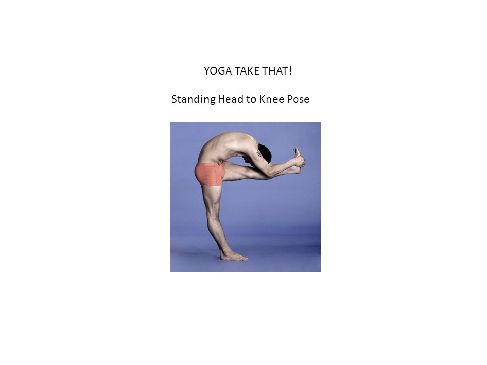 YOGA TAKE THAT! Standing Head to Knee Pose