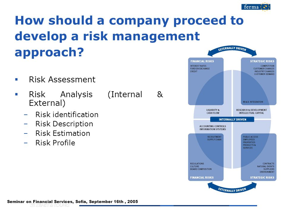 Seminar on Financial Services, Sofia, September 16th, 2005 How should a company proceed to develop a risk management approach.