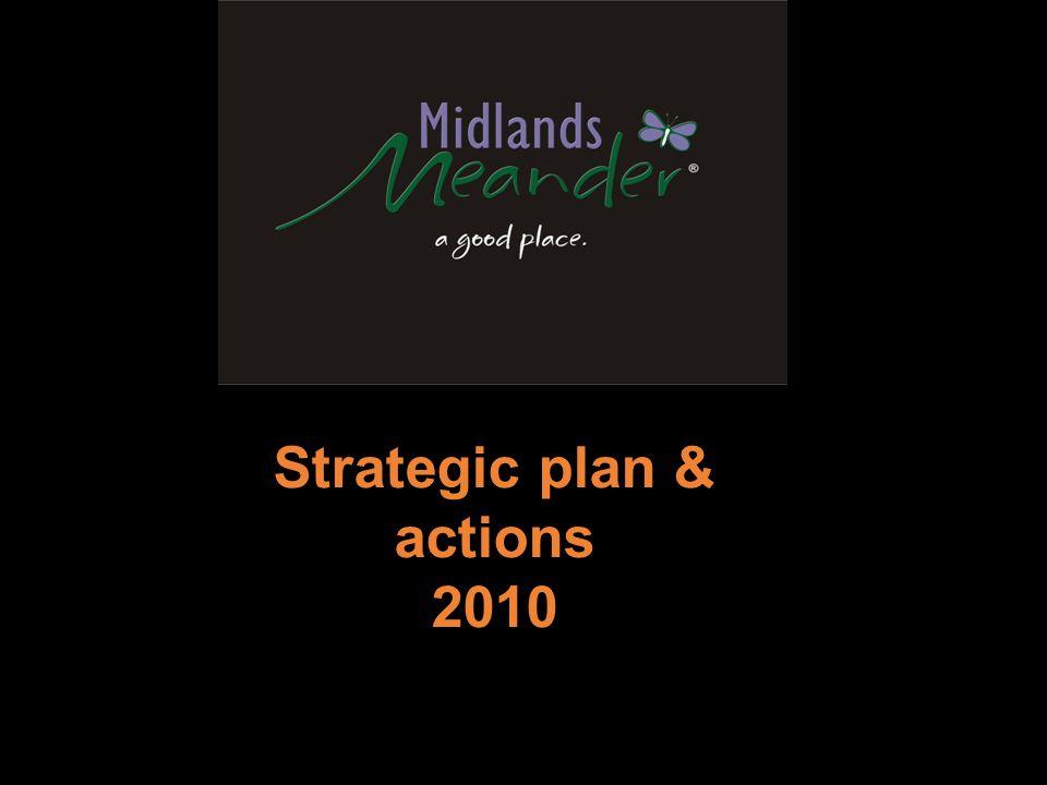 Strategic plan & actions 2010