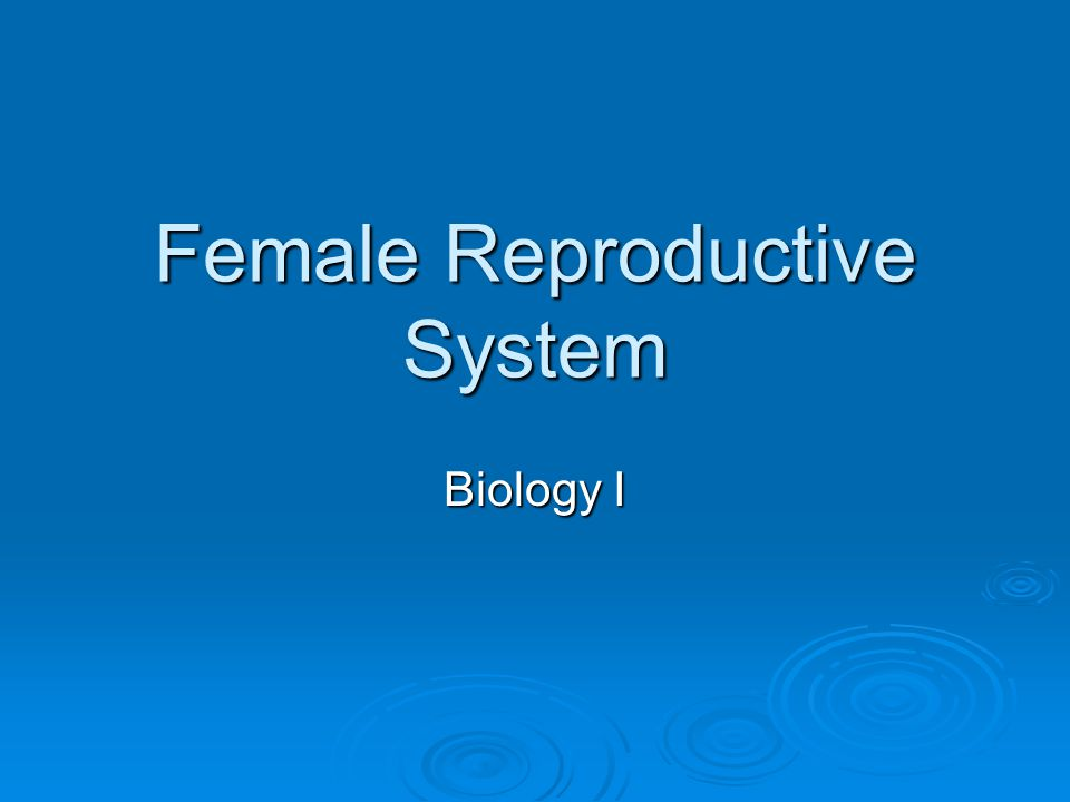 Female Reproductive System Biology I