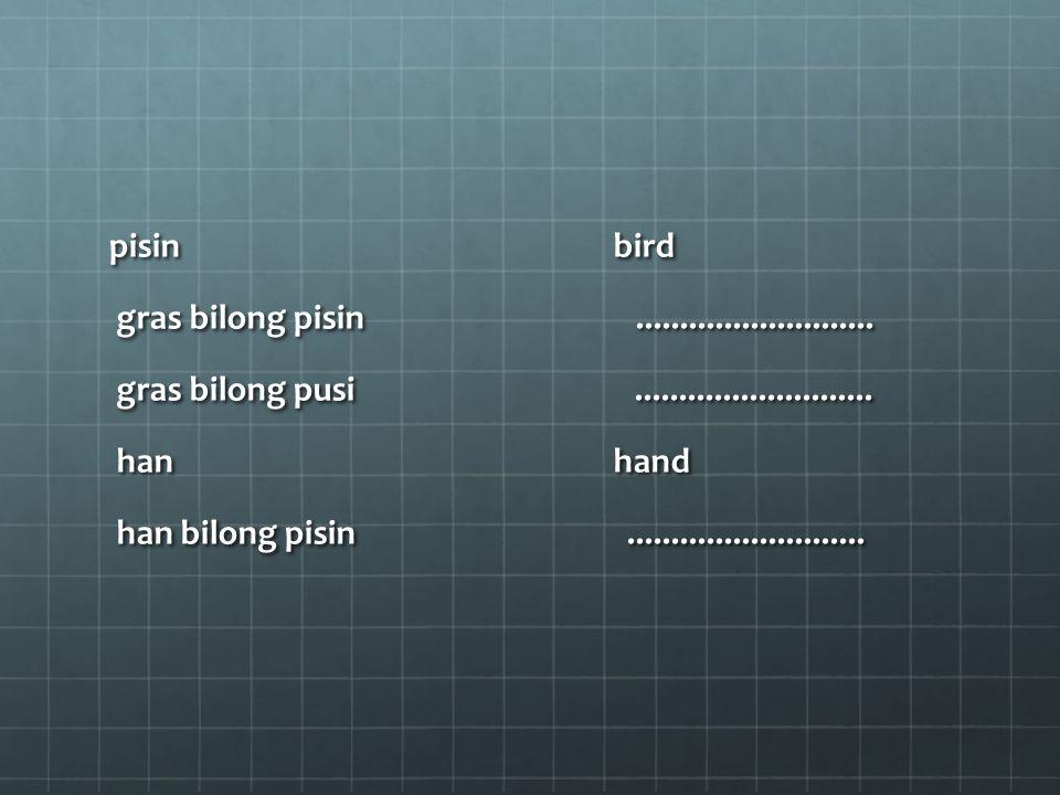 pisin bird pisin bird gras bilong pisin...........................