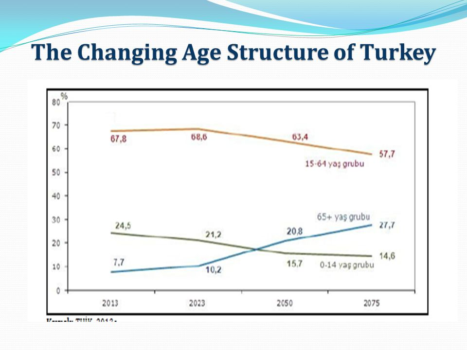 The Changing Age Structure of Turkey
