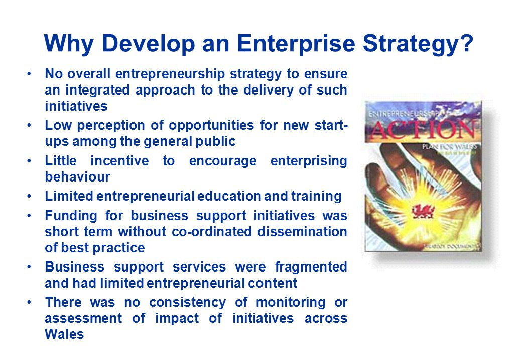 Why Develop an Enterprise Strategy.