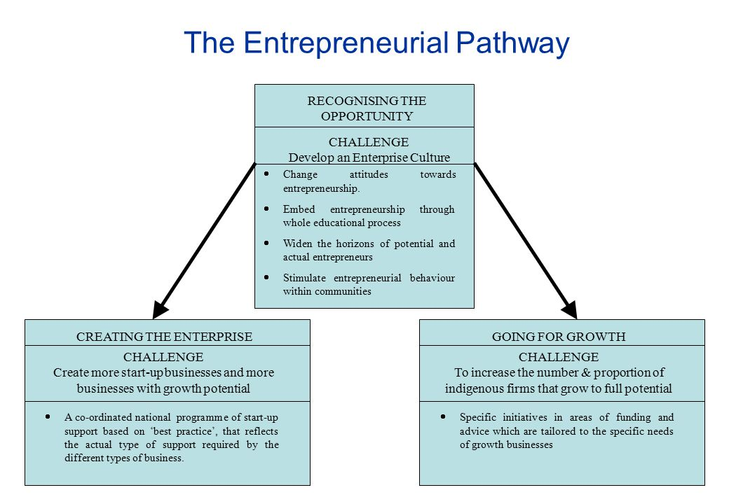 The Entrepreneurial Pathway RECOGNISING THE OPPORTUNITY CHALLENGE Develop an Enterprise Culture  Change attitudes towards entrepreneurship.