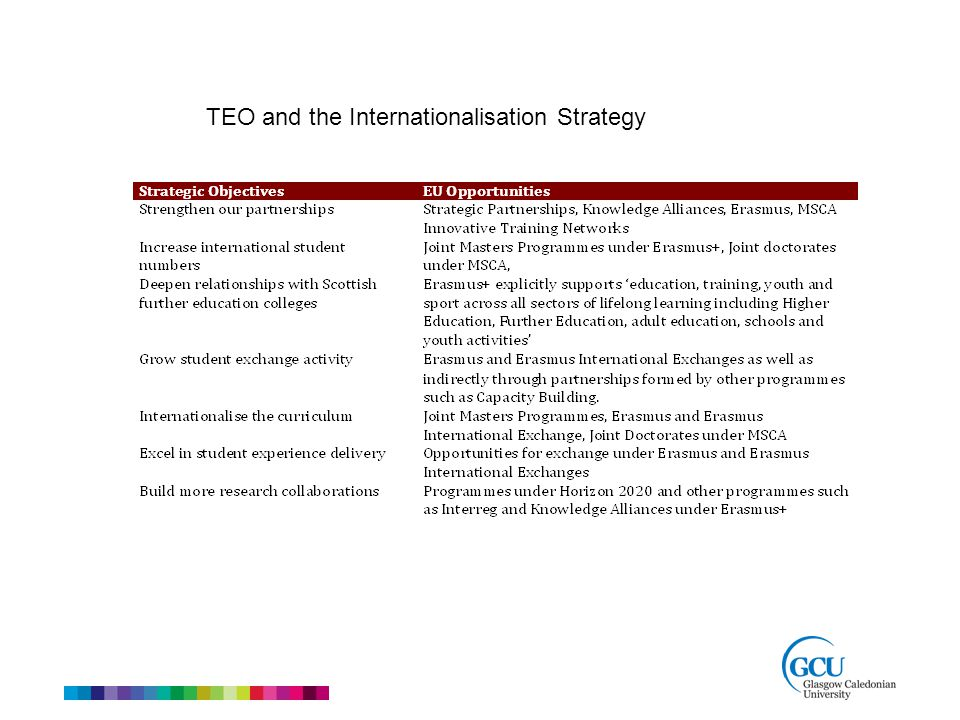 TEO and the Internationalisation Strategy