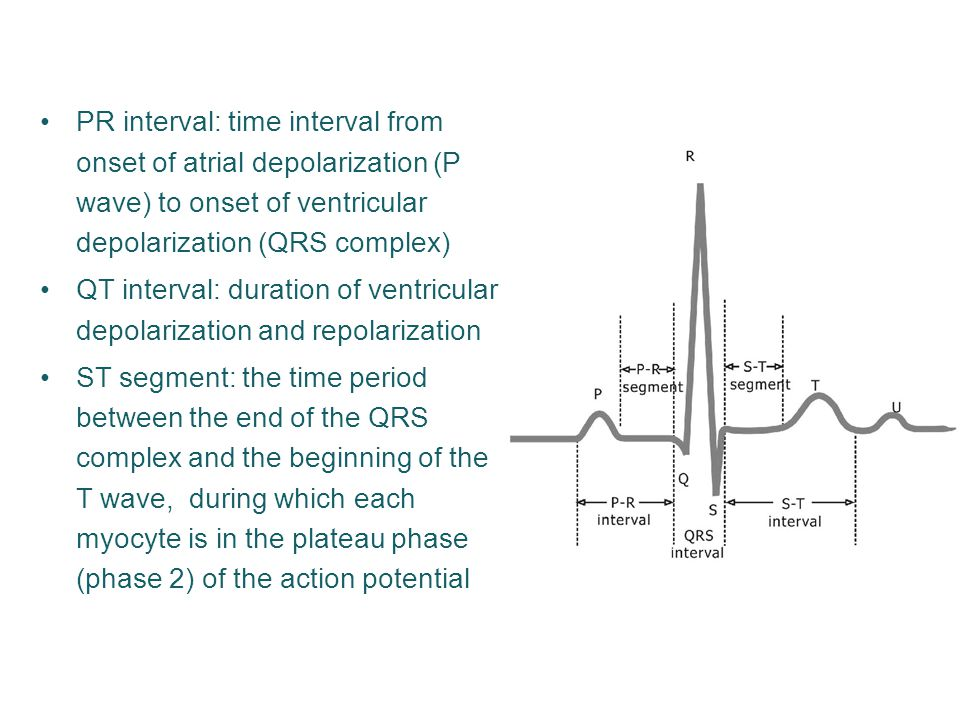 PR interval: time interval from onset of atrial depolarization (P wave) to onset of ventricular depolarization (QRS complex) QT interval: duration of ventricular depolarization and repolarization ST segment: the time period between the end of the QRS complex and the beginning of the T wave, during which each myocyte is in the plateau phase (phase 2) of the action potential