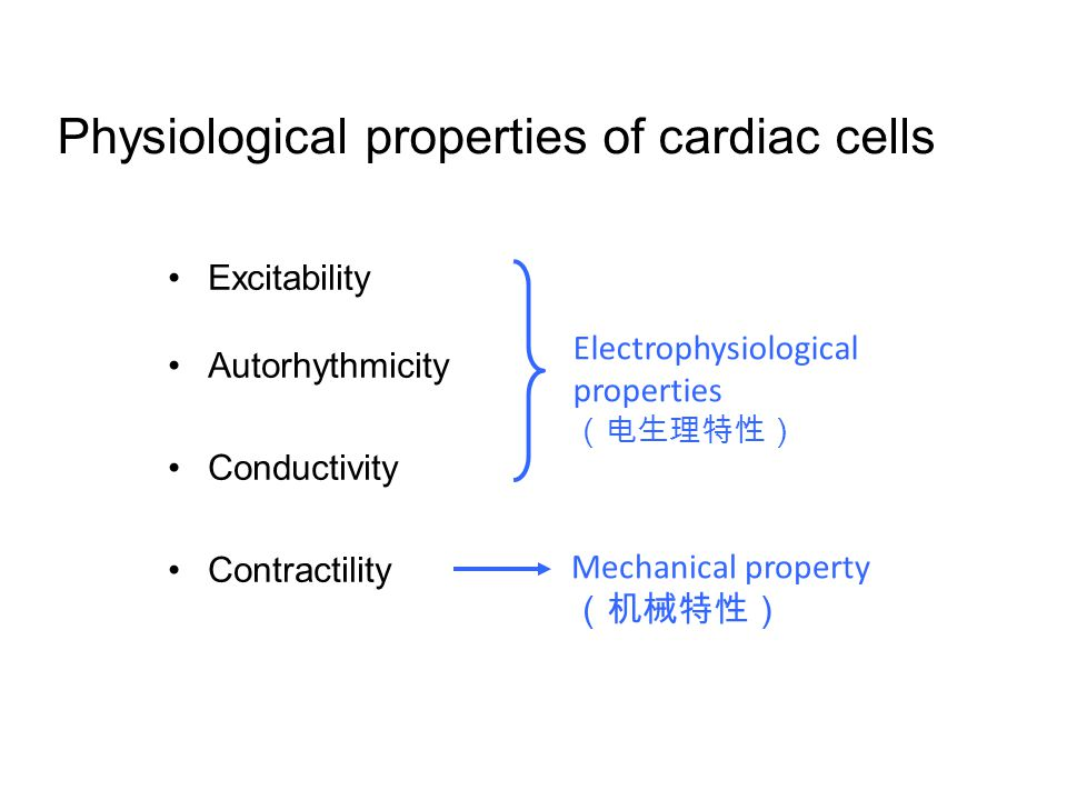 Excitability Autorhythmicity Conductivity Contractility Electrophysiological properties (电生理特性) Mechanical property (机械特性) Physiological properties of