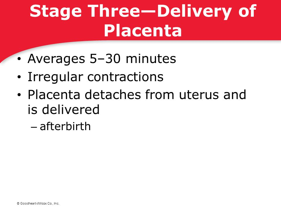 © Goodheart-Willcox Co., Inc. Stage Three—Delivery of Placenta Averages 5–30 minutes Irregular contractions Placenta detaches from uterus and is deliv