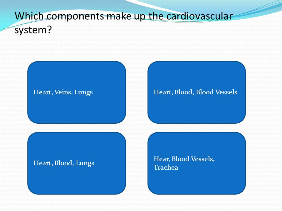 Which components make up the cardiovascular system? Heart, Veins, LungsHeart, Blood, Blood Vessels Heart, Blood, Lungs Hear, Blood Vessels, Trachea