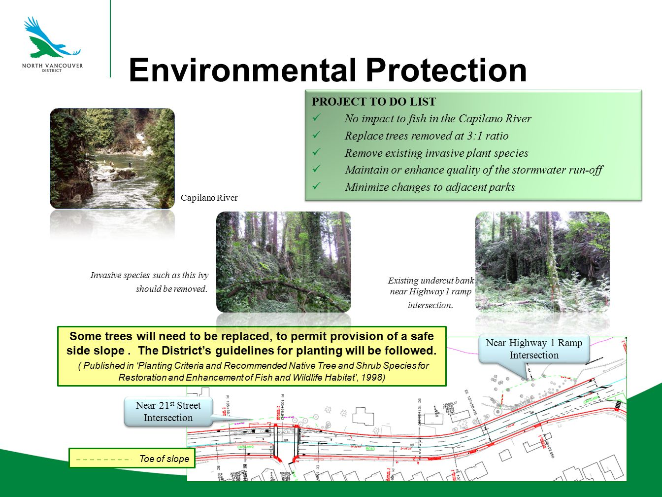 Environmental Protection PROJECT TO DO LIST No impact to fish in the Capilano River Replace trees removed at 3:1 ratio Remove existing invasive plant