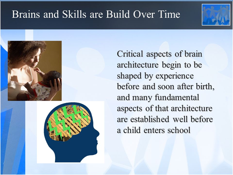 Brains and Skills are Build Over Time Because it is far more difficult to alter neural circuits substantially after their sensitive periods have ended experiences during these sensitive periods play an exceptionally important role in shaping the capacities and sensitivities of the developing brain (and thus of the child)