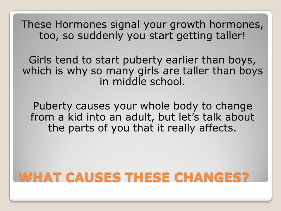 Key Words: Anatomy & Puberty MALE Pituitary Gland Penis Scrotum Testicles (testes) FEMALE Pituitary Gland Vagina Uterus Fallopian Tubes Ovaries Vulva Understanding anatomy helps us understand puberty.