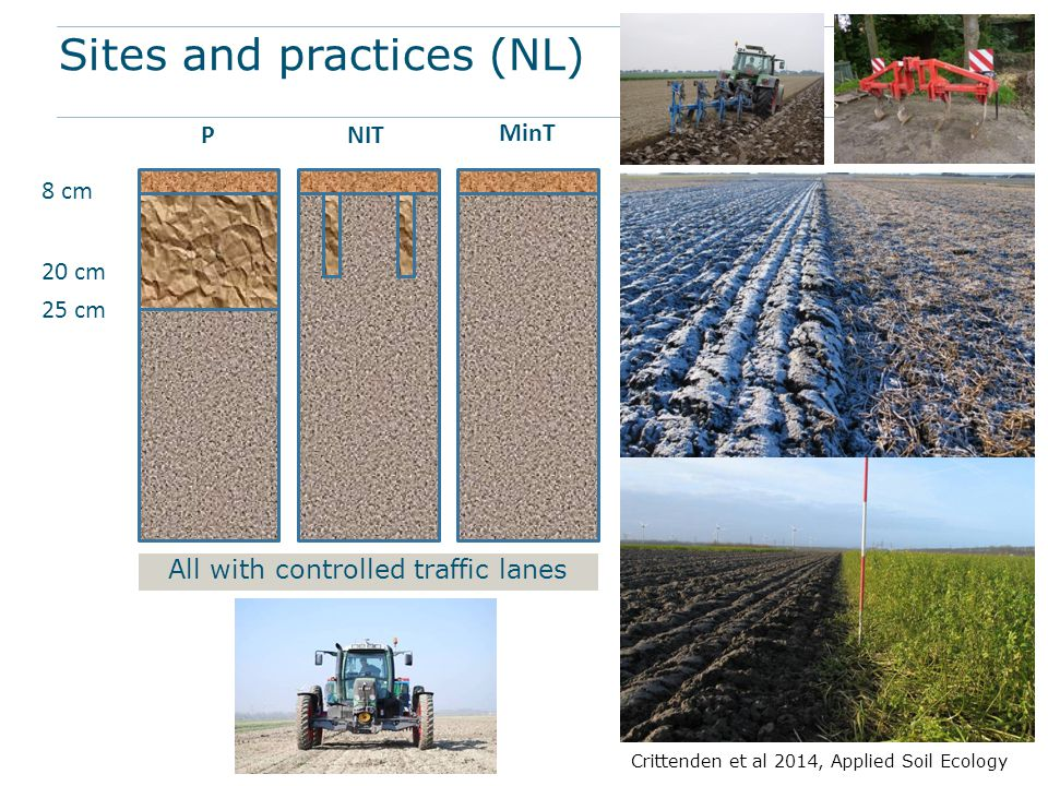Sites and practices (NL) 8 cm 20 cm 25 cm PNIT MinT All with controlled traffic lanes Crittenden et al 2014, Applied Soil Ecology
