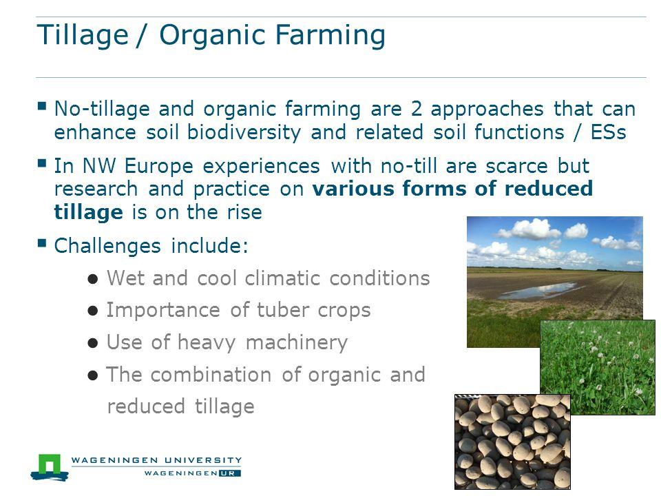 Tillage / Organic Farming  No-tillage and organic farming are 2 approaches that can enhance soil biodiversity and related soil functions / ESs  In N