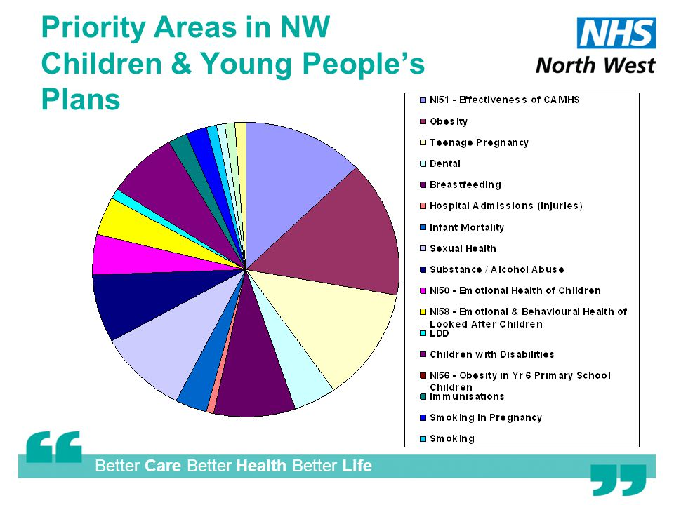 Better Care Better Health Better Life Priority Areas in NW Children & Young People's Plans