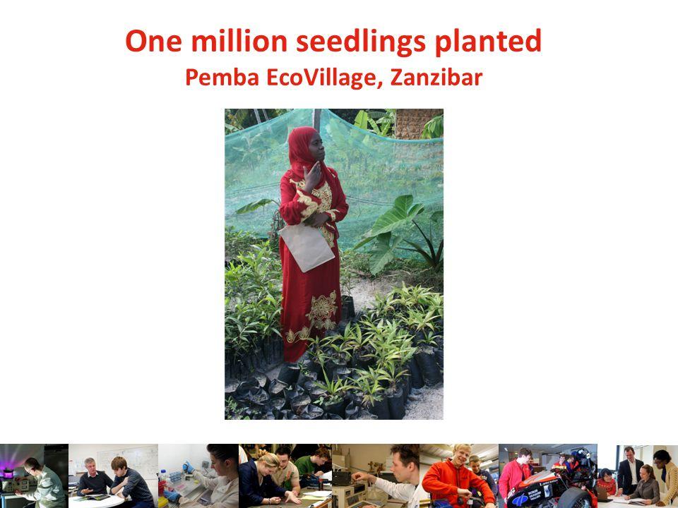 One million seedlings planted Pemba EcoVillage, Zanzibar