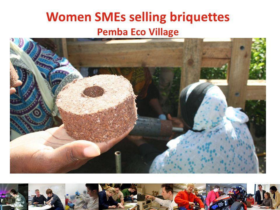 Women SMEs selling briquettes Pemba Eco Village