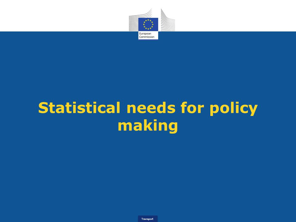 Transport Statistical needs for policy making