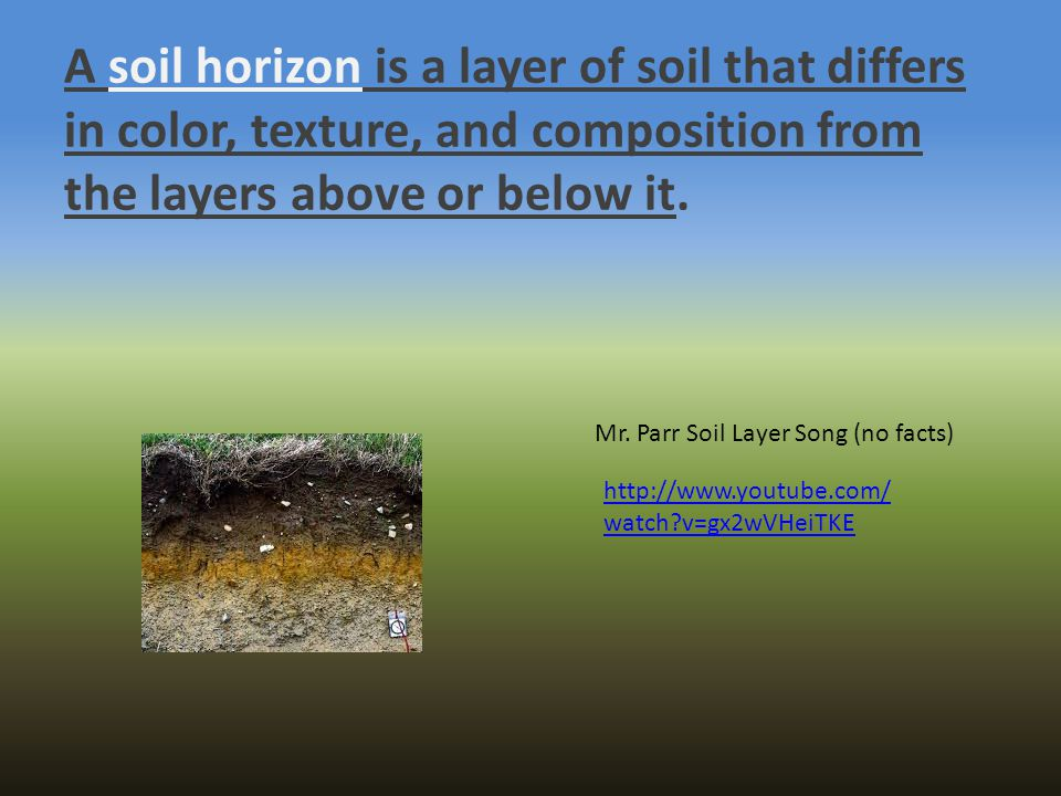 A soil horizon is a layer of soil that differs in color, texture, and composition from the layers above or below it.