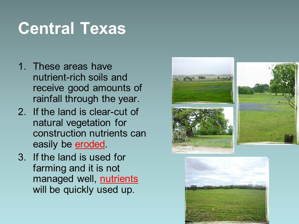 Central Texas 1.These areas have nutrient-rich soils and receive good amounts of rainfall through the year.