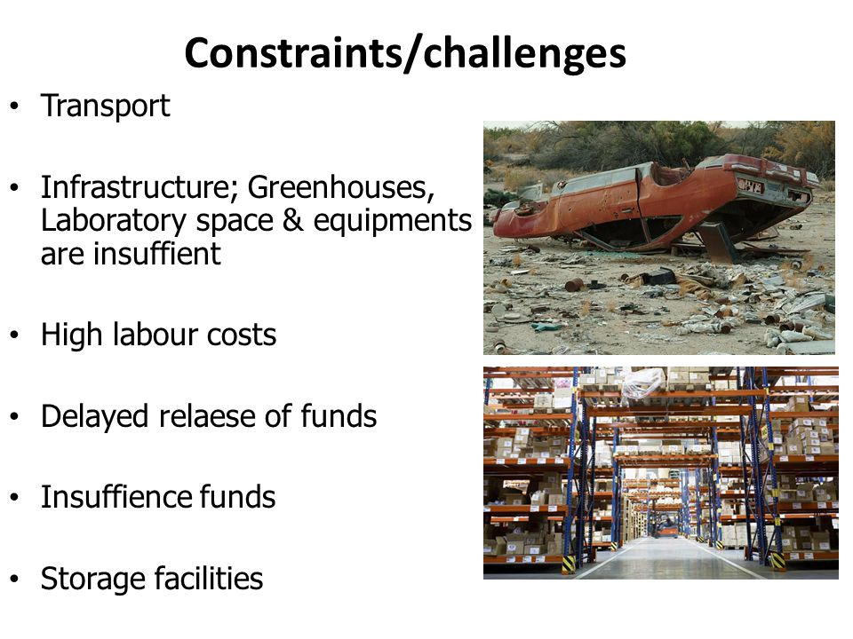 Constraints/challenges Transport Infrastructure; Greenhouses, Laboratory space & equipments are insuffient High labour costs Delayed relaese of funds