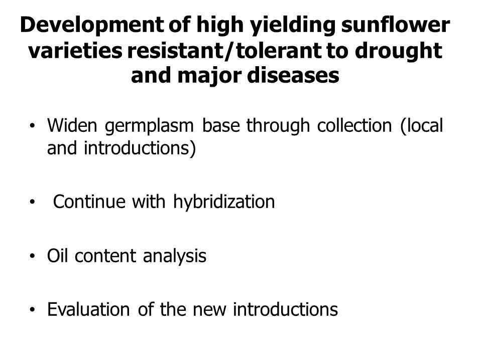 Development of high yielding sunflower varieties resistant/tolerant to drought and major diseases Widen germplasm base through collection (local and i