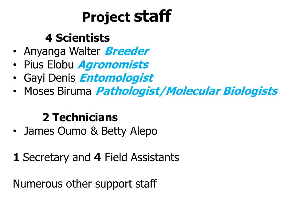 Project staff 4 Scientists Anyanga Walter Breeder Pius Elobu Agronomists Gayi Denis Entomologist Moses Biruma Pathologist/Molecular Biologists 2 Technicians James Oumo & Betty Alepo 1 Secretary and 4 Field Assistants Numerous other support staff