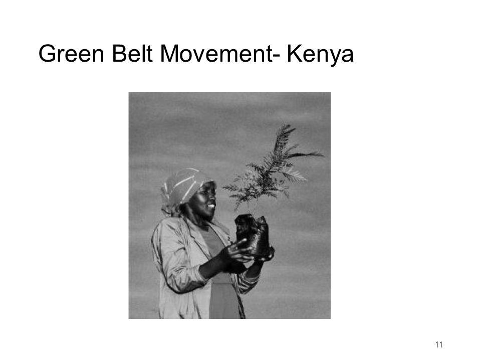 Green Belt Movement- Kenya 11