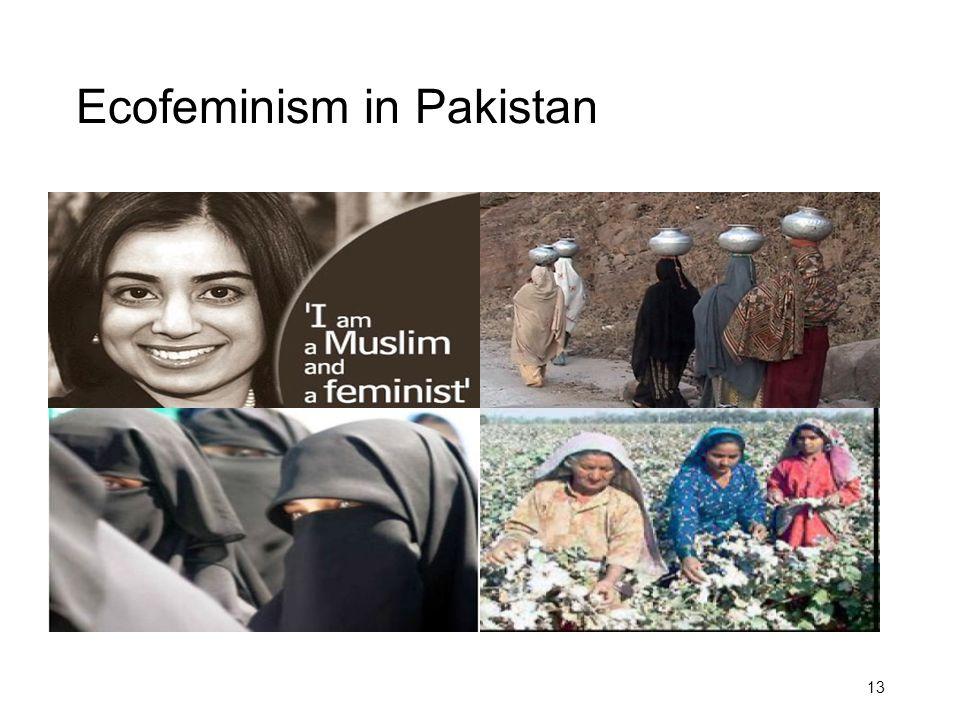 Ecofeminism in Pakistan 13
