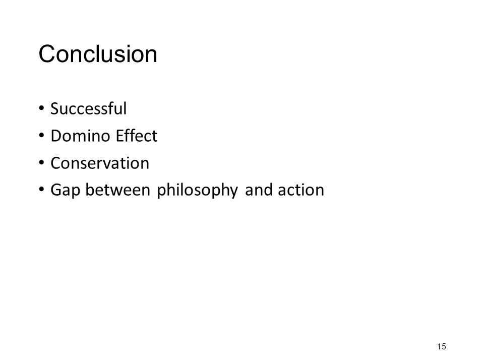 Conclusion Successful Domino Effect Conservation Gap between philosophy and action 15