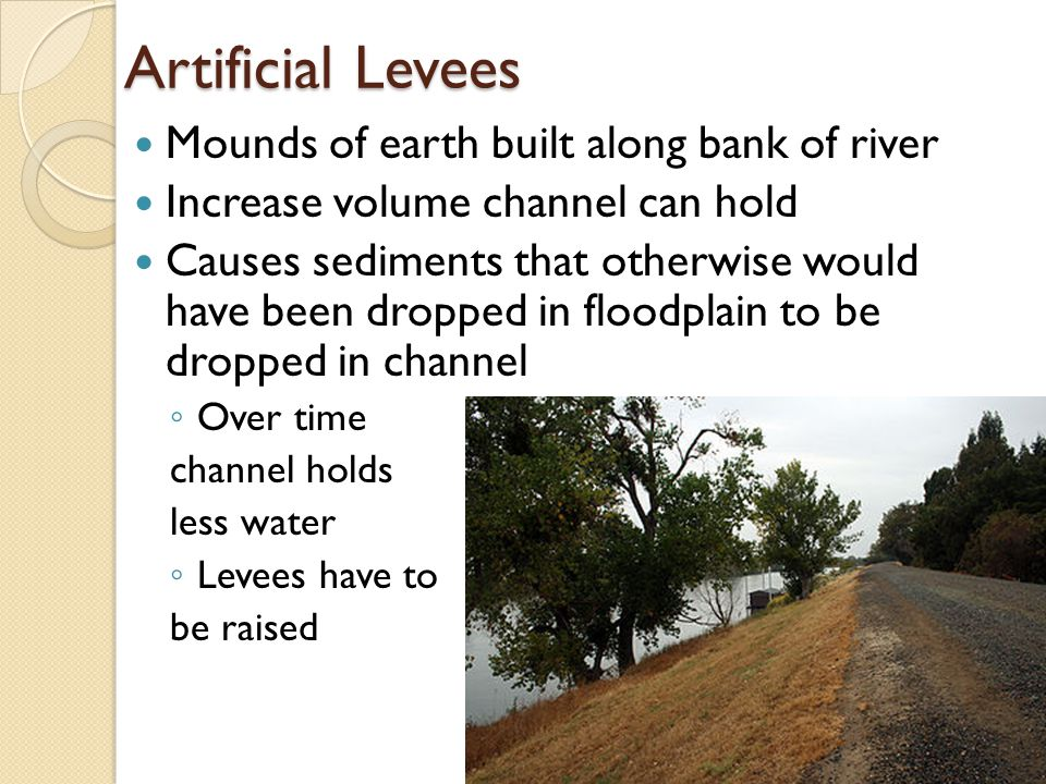 Artificial Levees Mounds of earth built along bank of river Increase volume channel can hold Causes sediments that otherwise would have been dropped in floodplain to be dropped in channel ◦ Over time channel holds less water ◦ Levees have to be raised
