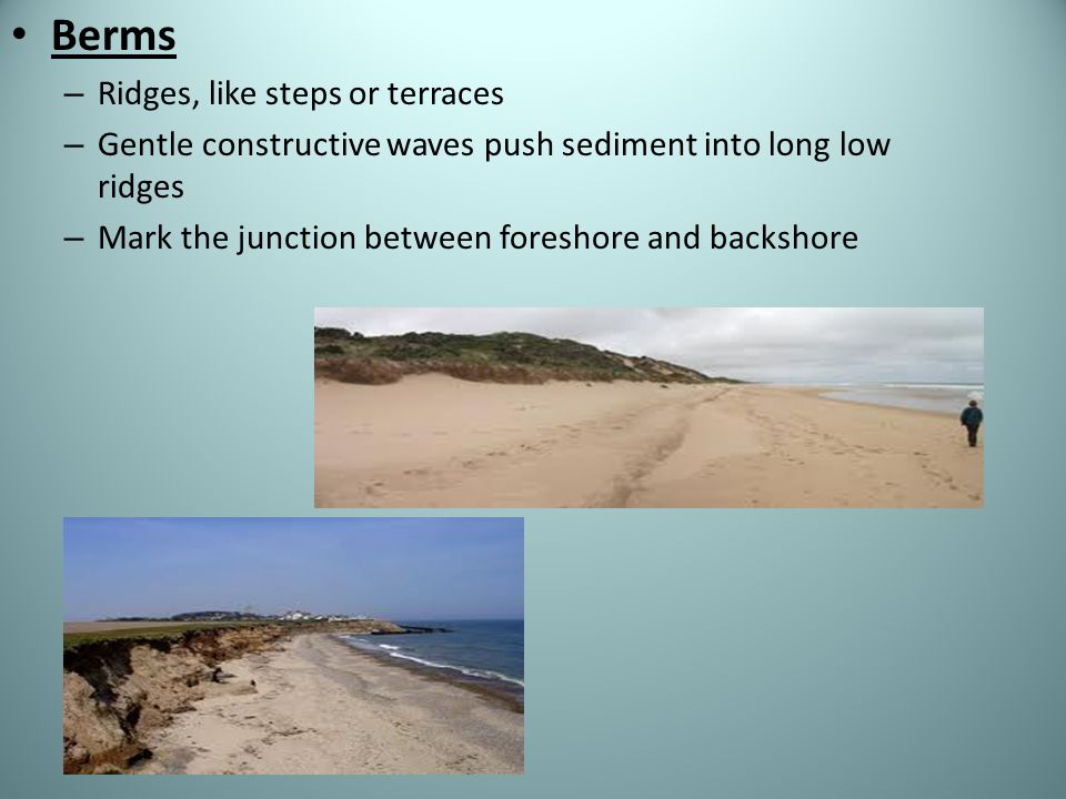 Berms – Ridges, like steps or terraces – Gentle constructive waves push sediment into long low ridges – Mark the junction between foreshore and backsh