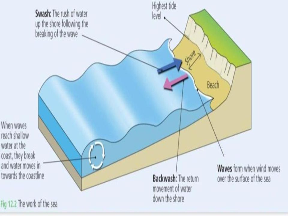 Chapter 12: Coastal Processes, Patterns & Associated Landforms, & Human Interaction Types of Waves 1.Constructive waves Deposit more than they erode Carries material in Swash up the shore Most common in summer 2.Destructive waves Erode more than they deposit Steep waves Strong Backwash Most common in winter